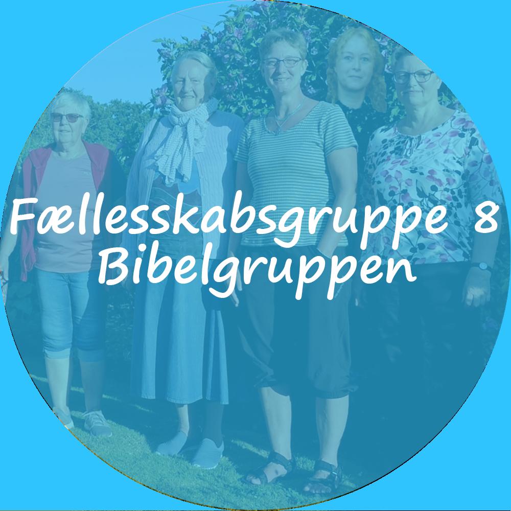 """Billedet viser 5 kvinder opstillet til billede foran en busk. Oven på billedet ligger et blåt filter. Tekst på billedet """"Fællesskabsgruppe 8 - Bibelgruppen"""". Billedet indeholder et link som scroller ned til beskrivelsen af gruppen."""